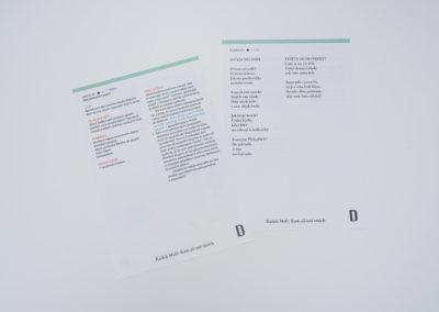 MEANDER-TISK-016